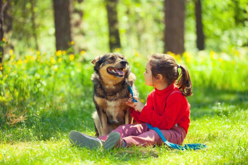 Mascotas: aportaciones positivas