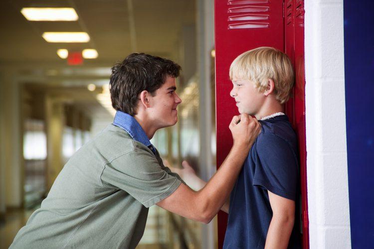 Agresión y conducta antisocial en la adolescencia